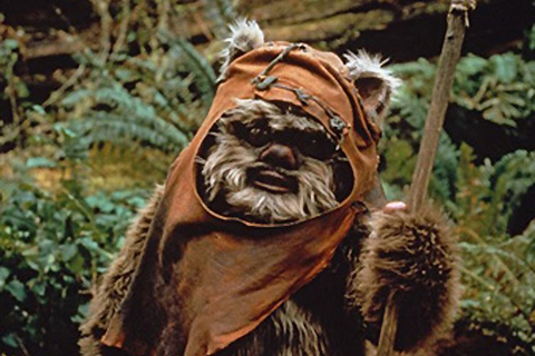 Wicket the Ewok. I had a poster of this dude from Pizza Hut. What a champ.